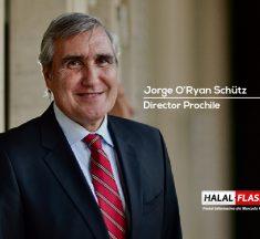 Conociendo a Jorge O'Ryan Schütz nuevo Director nacional de ProChile