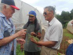 Agricultores de Rapa Nui conocieron sobre agricultura sostenible en Cuba