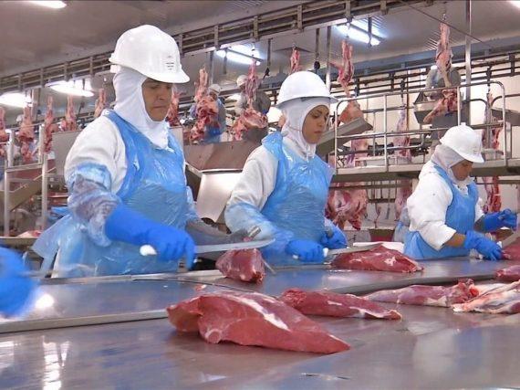 Chile podría exportar US$ 100 millones en carne a China