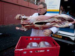 Prohibición en Bélgica del faenado kosher tiene a los judíos preocupados por lo que vendrá después