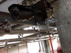 Cámaras de vigilancia en mataderos: Carrefour, primera empresa en pedirlo a sus proveedores en España