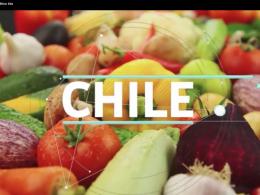 Conociendo INIA CHILE