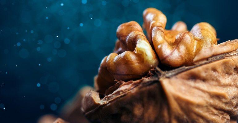 Las nueces son el 8° alimento más exportado de la región y envíos aumentaron 2% en un año