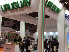 Frigoyí y Breeders and Packers Uruguay apuestan a Foodex para tentar aún más al mercado de Japón