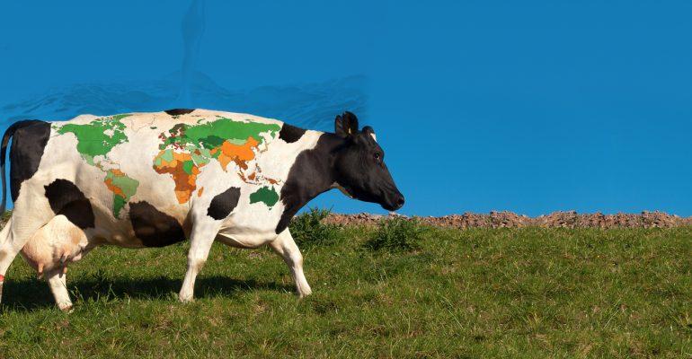 El Índice de Precios de la Carne de la FAO creció en un 0,7% durante el mes de febrero