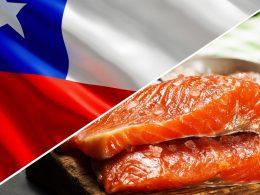 Envíos de salmón chileno logran mejor primer trimestre de su historia