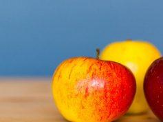 Altos precios para la oferta de manzana gala del Hemisferio Sur en China