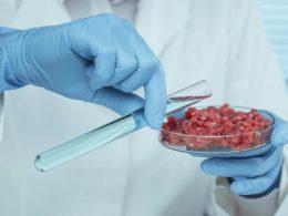 Ligar el consumo de proteínas cárnicas cultivadas en laboratorio con la alta tecnología no tiene una gran aceptación entre los consumidores