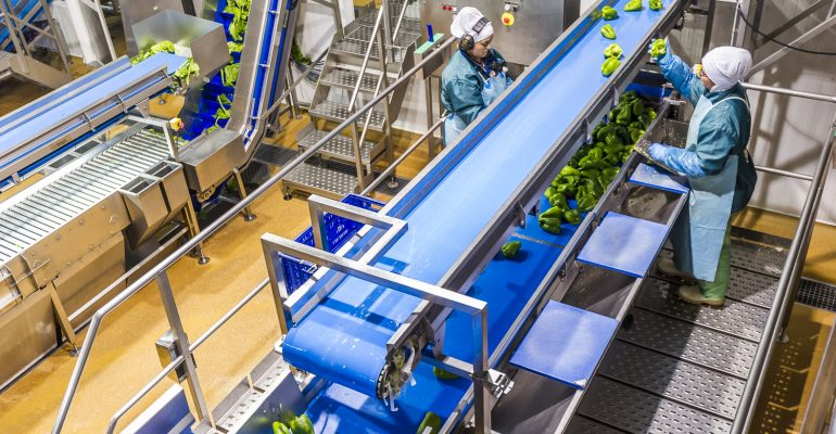 Citrus llega al mercado chino con su marca de alimentación infantil Byba