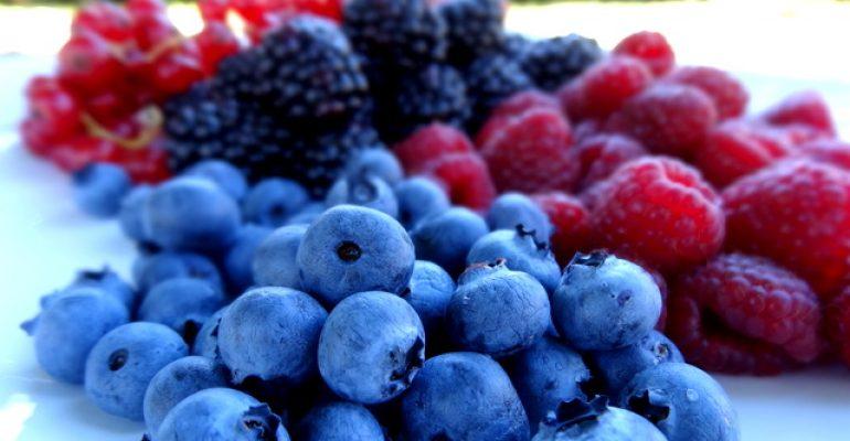 Hortifrut se alía con BFruit, líder de producción de berries frescos en Portugal